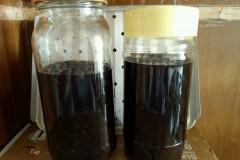 醋豆-陈醋泡黑豆