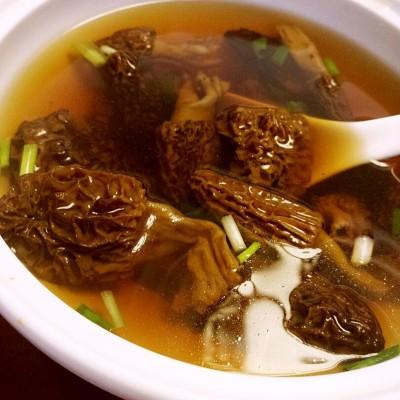 西藏野生羊肚菌高汤