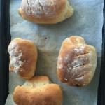 全麦蔓越莓面包