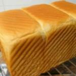 玉米油土司面包