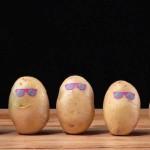 土豆的花式吃法,4种零失手料理秒杀土豆丝