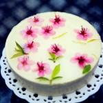 看《十里桃花》,品桃花酸奶慕斯蛋糕