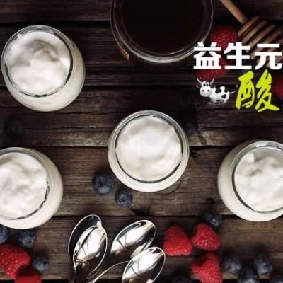 自制益生元酸奶通便排毒瘦身伴侣