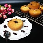 蔓越莓海棉小蛋糕