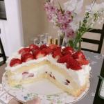 最簡單的裸蛋糕/八寸戚風