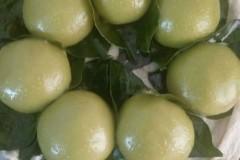 麦苗青汁青团