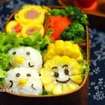 花生鸡肉小鸡饭团#理想生活实验室#