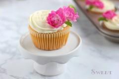 百香果纸杯蛋糕