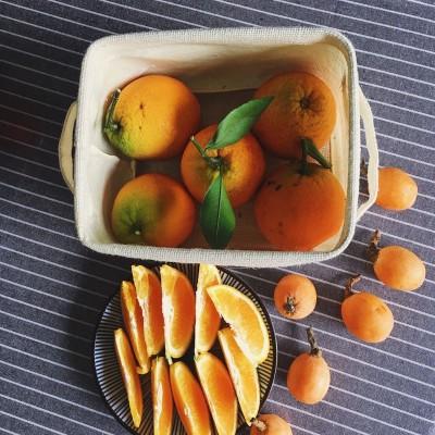 鲜榨果汁配方-柳橙枇杷汁
