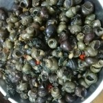紫苏炒田螺