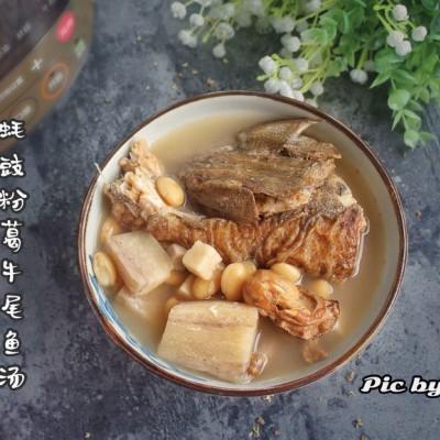 蚝豉粉葛牛尾鱼汤