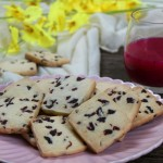 蔓越莓奶酥饼干