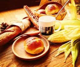 玉米小餐包