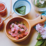 盐渍樱花、樱叶&樱花酱