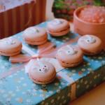 粉色马卡龙#松下多面美味#