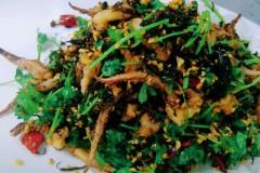 橄榄鱿鱼须
