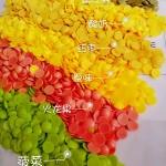 果蔬蛋黄溶豆