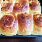 果干面包(中种)