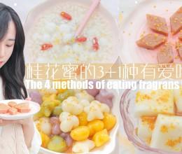 桂花蜜的3+1种有爱吃法「厨娘物语」