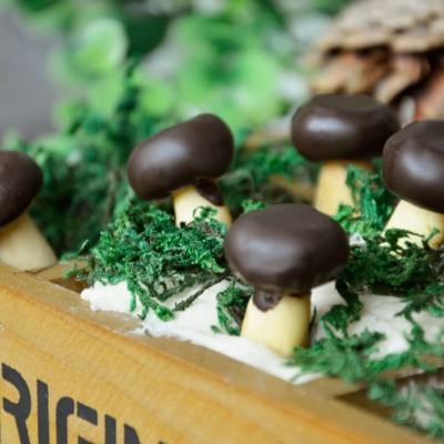 蘑菇力饼干