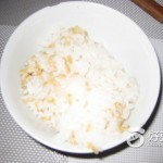 燕麦片米饭