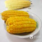 奶香甜玉米
