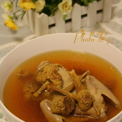 姬松茸鸽子汤