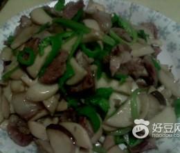 杏鲍菇炒肉