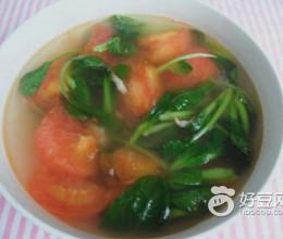 番茄青菜汤