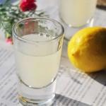 柠檬鲜姜酵素