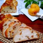 酸奶葡萄干辮子面包