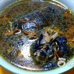 甲鱼的功效与作用--甲鱼乌鸡汤