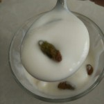 自制酸奶#新鲜从这里