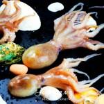 日式章鱼海藻