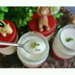 自制酸奶(电饭锅版)