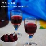 桑葚养生酒