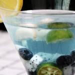 山竹藍莓潘趣酒