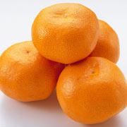 橘子(桔子)
