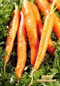 秋季最养生的5种蔬菜