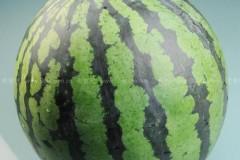 西瓜的切法