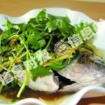 家常菜清蒸鱼的做法