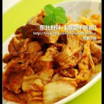 泡菜牛肝菌(东北野味)