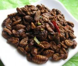炒金丝蛹的做法