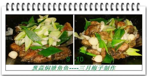 葱蒜焖塘角鱼的做法的做法【图解】_葱蒜焖塘角鱼的的