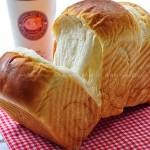 北海道牛奶土司(早餐食谱-100%中种法)