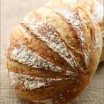 1天5分钟的手工面包之Boule(早餐食谱-普通面粉版)
