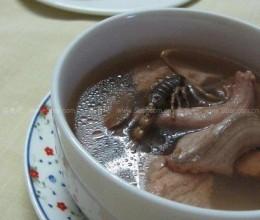 金边水蛇煲蝎子