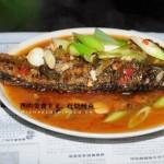红烧鲤鱼做法(荤菜)