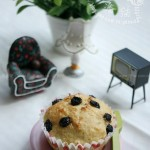蓝莓酸奶马芬(早餐菜谱-完全没有难度的蛋糕)