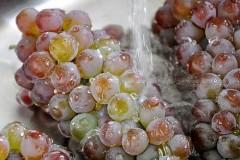 如何洗葡萄